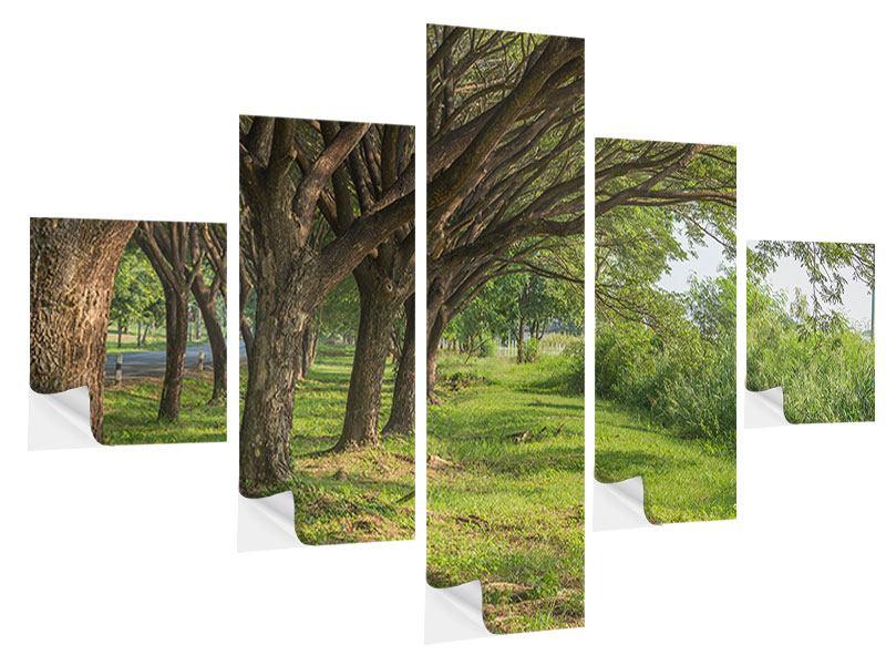 Klebeposter 5-teilig Alter Baumbestand