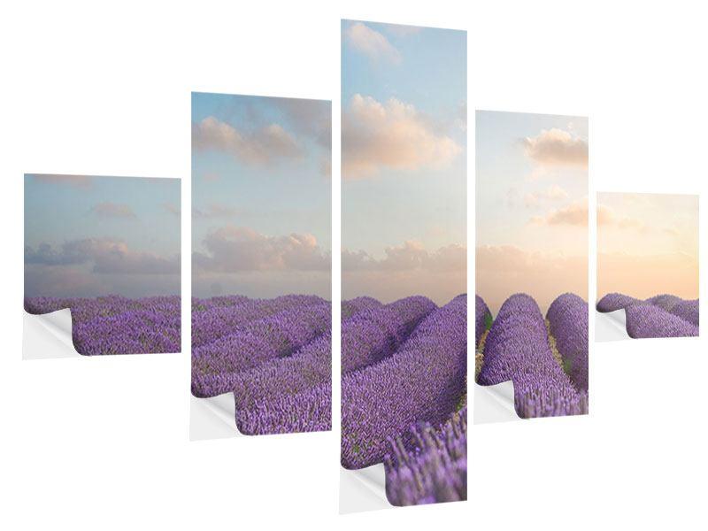 Klebeposter 5-teilig Das blühende Lavendelfeld