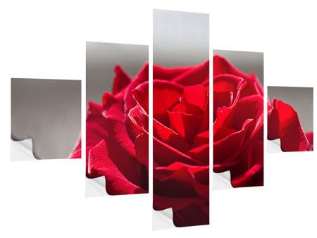 Klebeposter 5-teilig Rote Rosenblüte