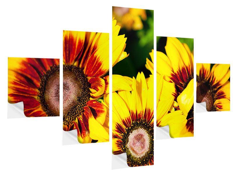 Klebeposter 5-teilig Reife Sonnenblumen