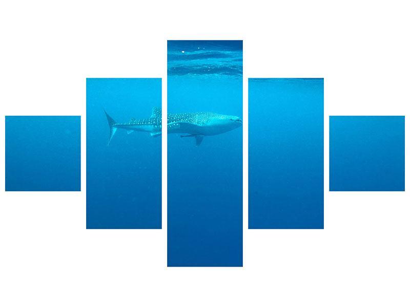 Klebeposter 5-teilig Der Walhai