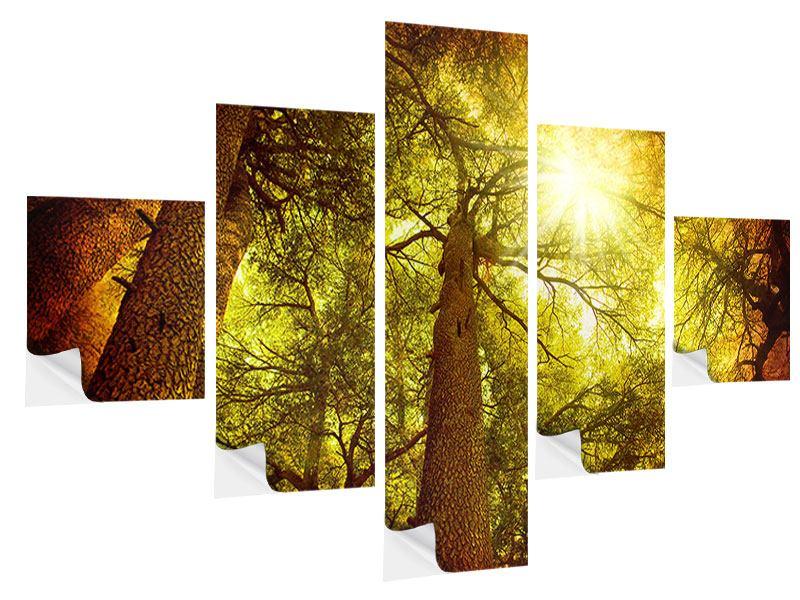 Klebeposter 5-teilig Cedar Baum