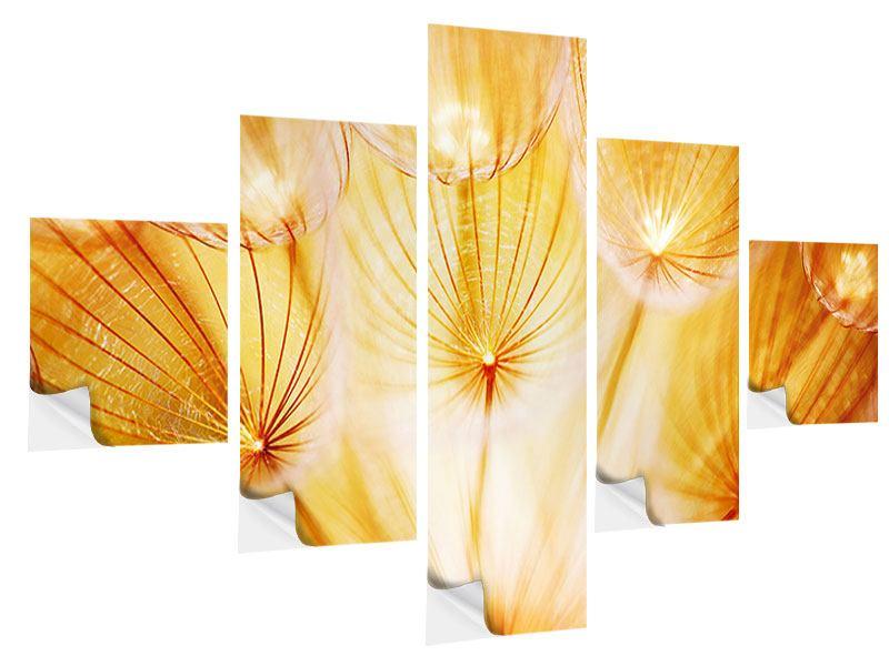 Klebeposter 5-teilig Close Up Pusteblume im Licht