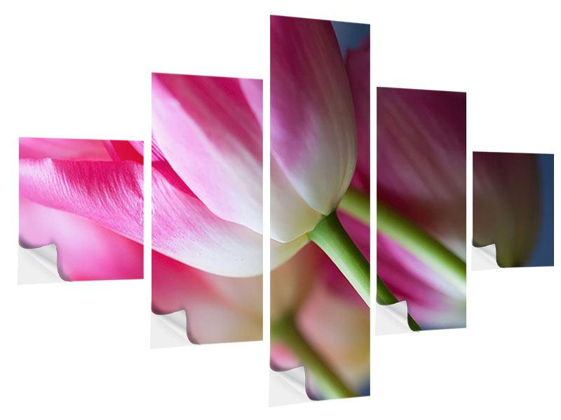Klebeposter 5-teilig Makro Tulpen