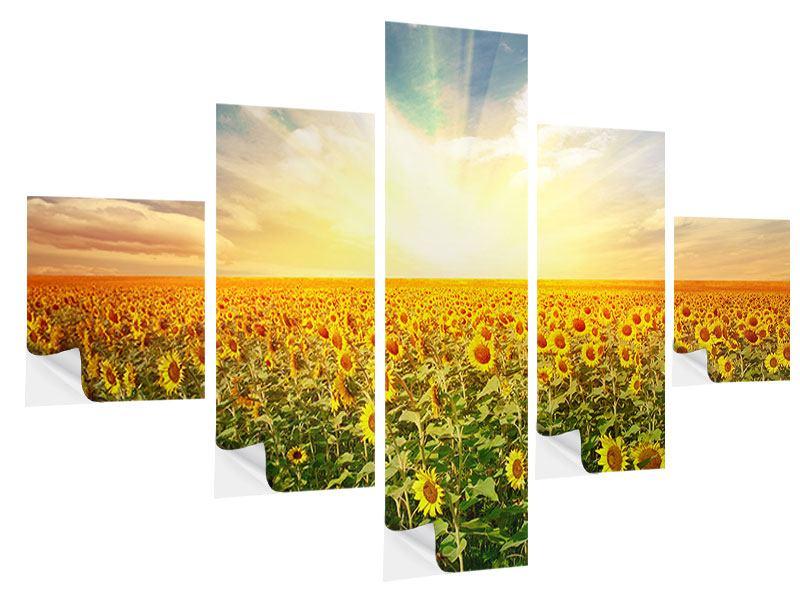 Klebeposter 5-teilig Ein Feld voller Sonnenblumen