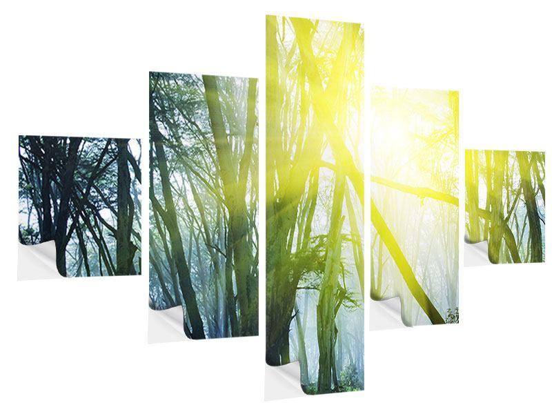 Klebeposter 5-teilig Sonnenstrahlen im Wald