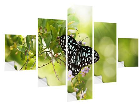 Klebeposter 5-teilig Papilio Schmetterling XXL