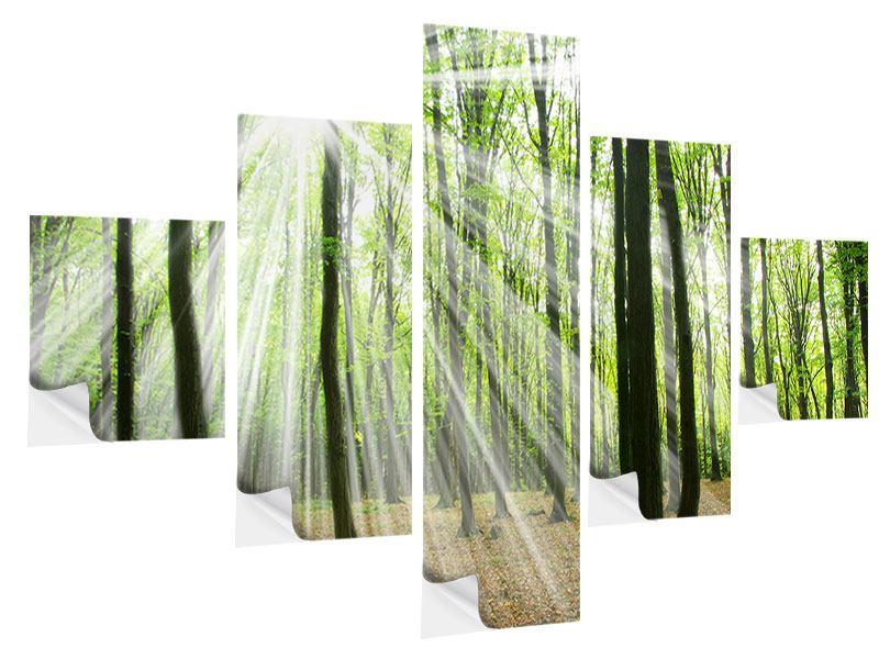 Klebeposter 5-teilig Magisches Licht in den Bäumen