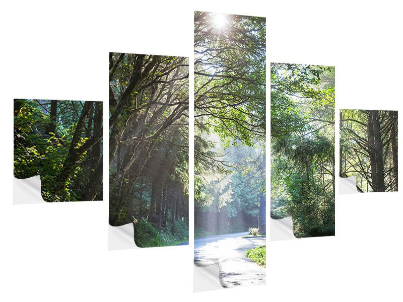 Klebeposter 5-teilig Sonniger Waldweg