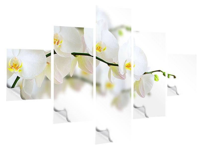 Klebeposter 5-teilig Weisse Orchideen
