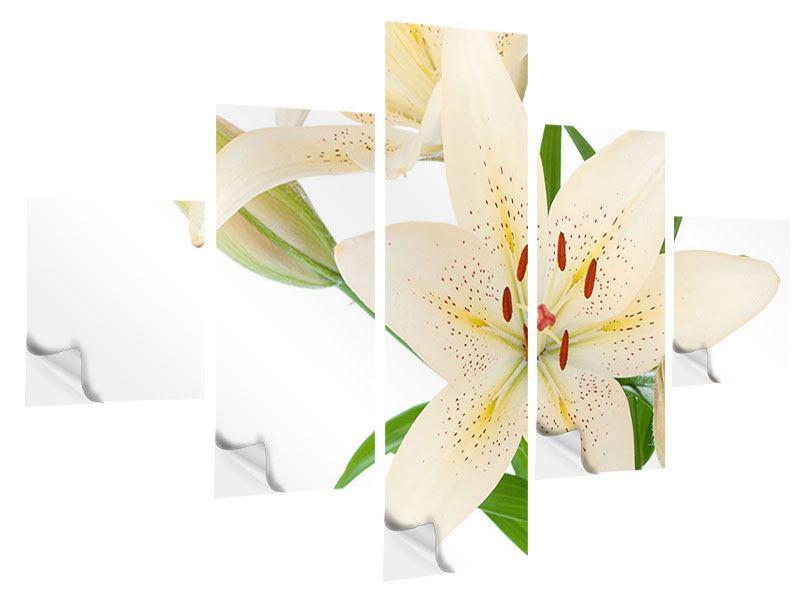 Klebeposter 5-teilig Weisser Lilienstrauch