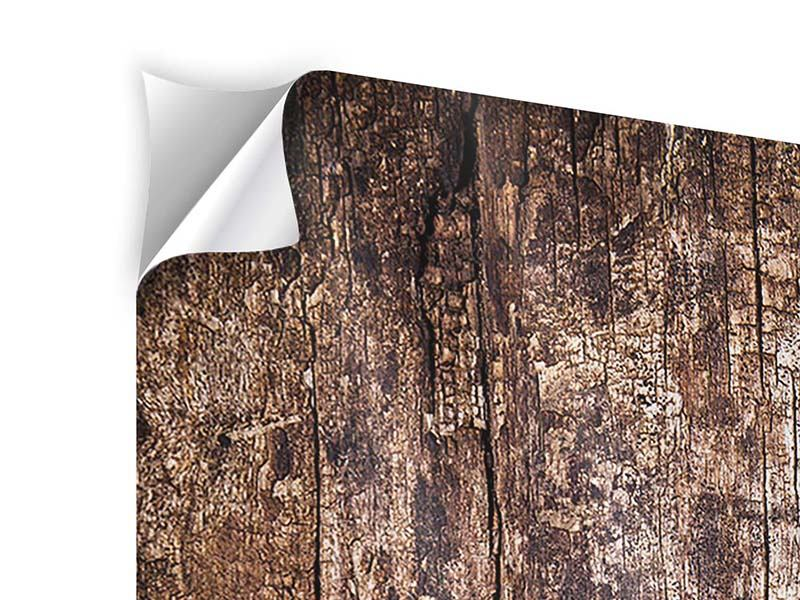 Klebeposter 5-teilig Retro-Holz