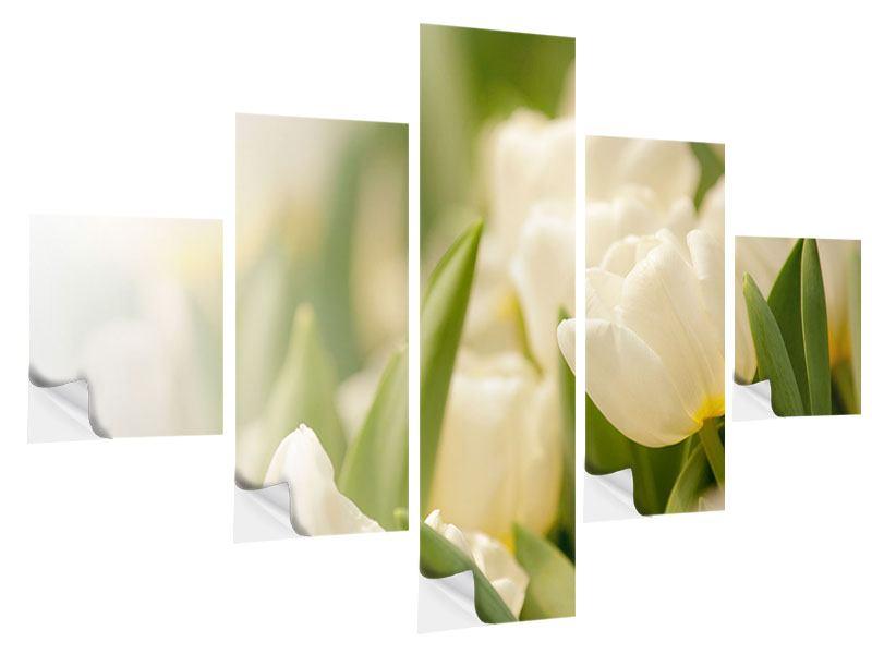 Klebeposter 5-teilig Tulpenperspektive