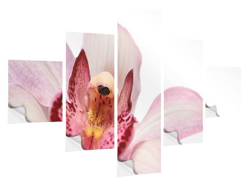 Klebeposter 5-teilig Orchideenblüte XXL