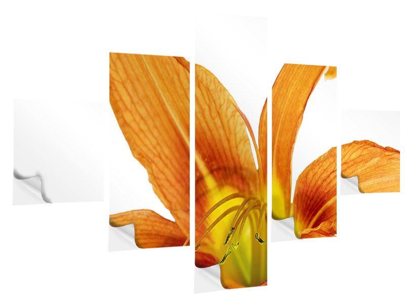 Klebeposter 5-teilig Die Tiger-Lilie