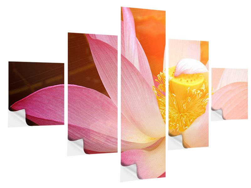 Klebeposter 5-teilig Close Up Lotus