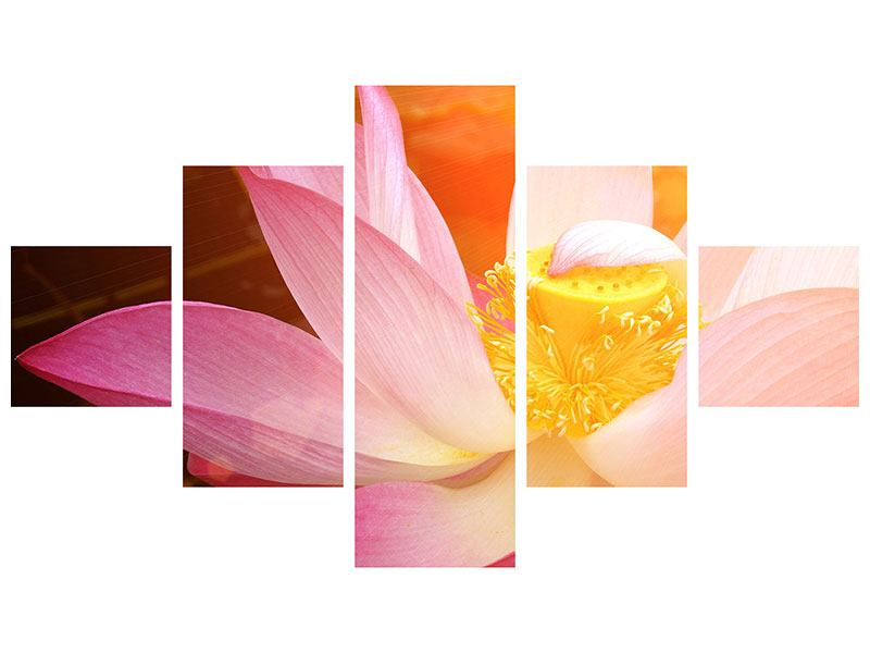 Klebeposter 5-teilig Close Up Lotus