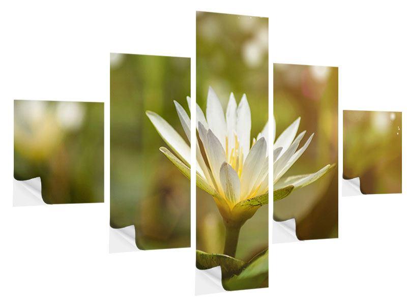 Klebeposter 5-teilig Lilien-Lichtspiel