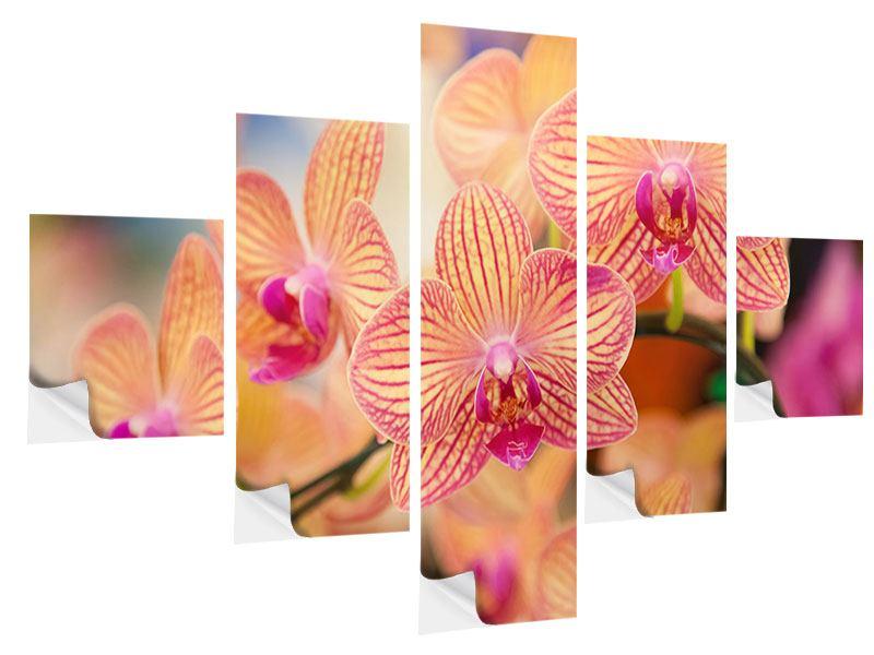 Klebeposter 5-teilig Exotische Orchideen