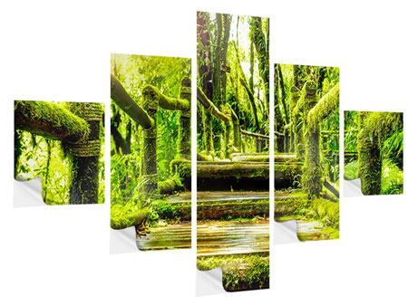 5 Piece Self-Adhesive Poster Moss