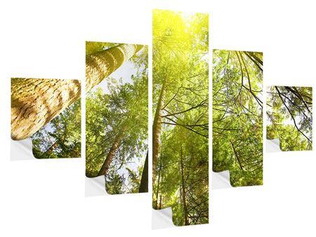 Klebeposter 5-teilig Baumkronen in der Sonne