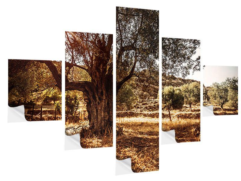 Klebeposter 5-teilig Olivenhain