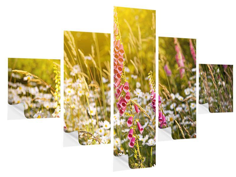 Klebeposter 5-teilig Sommerliche Blumenwiese