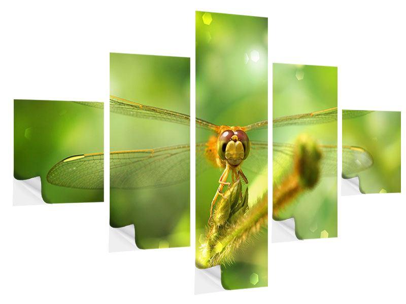 Klebeposter 5-teilig XXL-Libelle