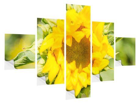 Klebeposter 5-teilig Wilde Sonnenblume
