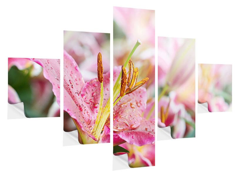 Klebeposter 5-teilig Lilien im Tau