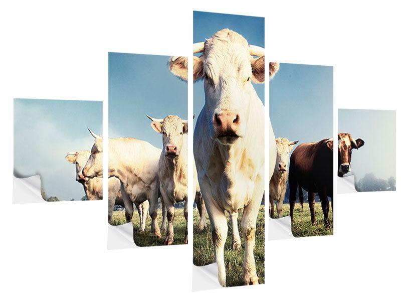 Klebeposter 5-teilig Kühe