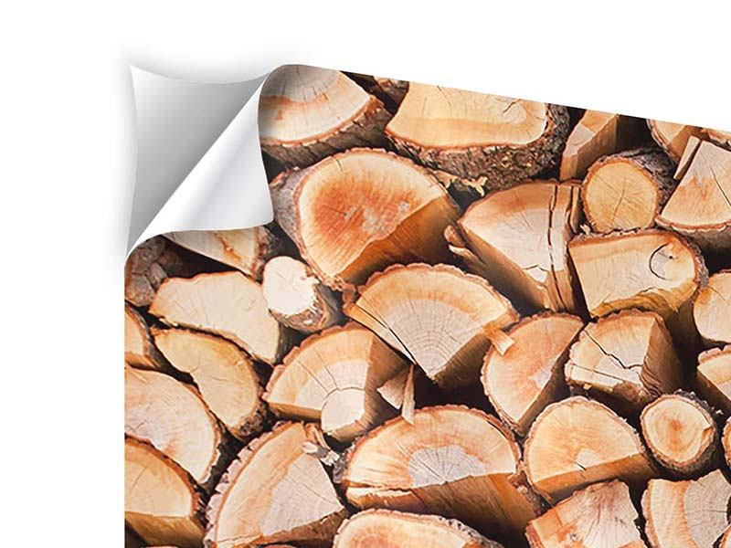 Klebeposter 5-teilig Birkenstapel