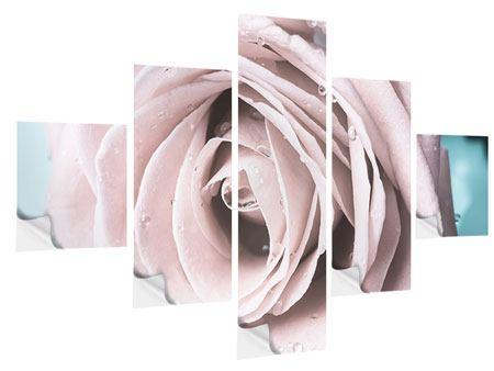 Klebeposter 5-teilig Pastellrose