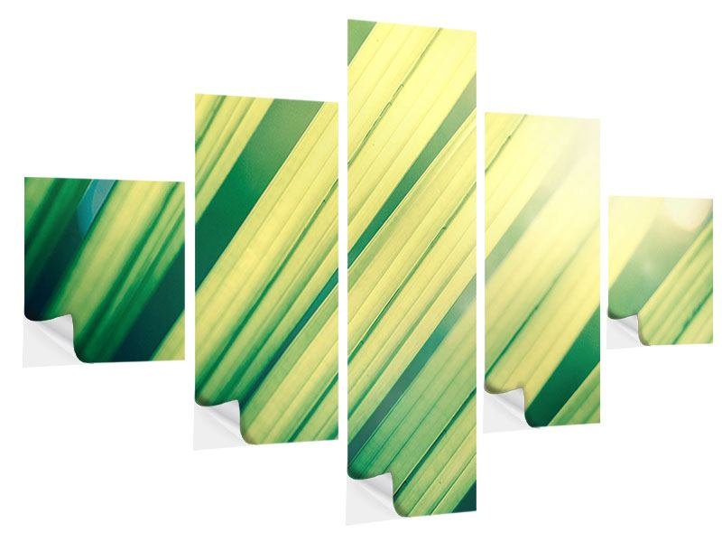 5 Piece Self-Adhesive Poster Illuminated Palm Leaf