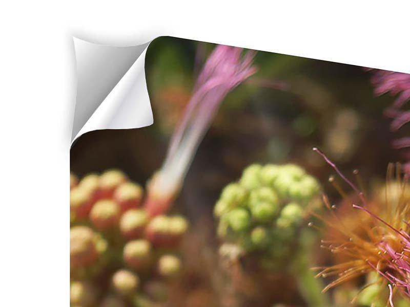 Klebeposter 5-teilig modern Die Regenbaumblüte