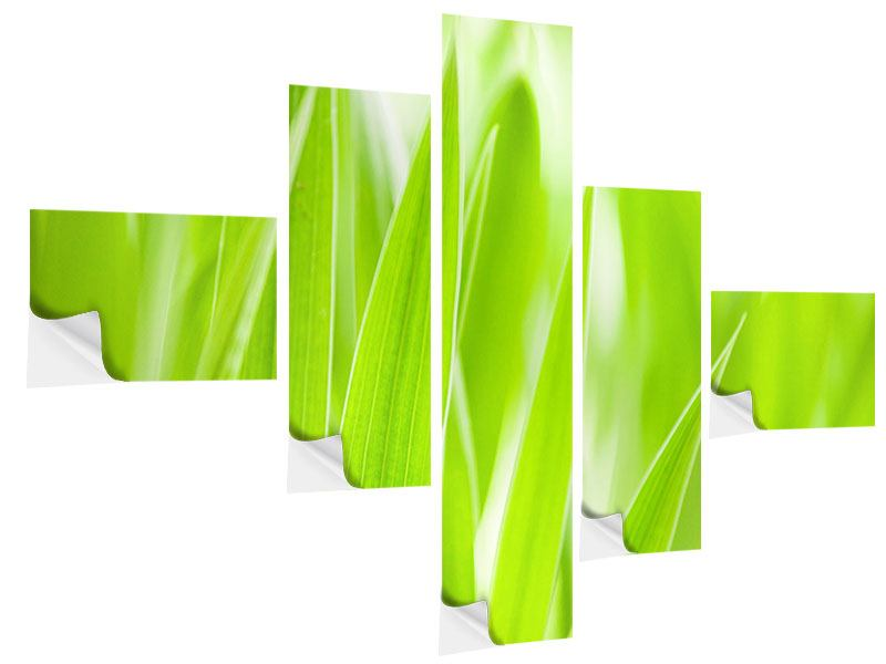 Klebeposter 5-teilig modern Gras XXL
