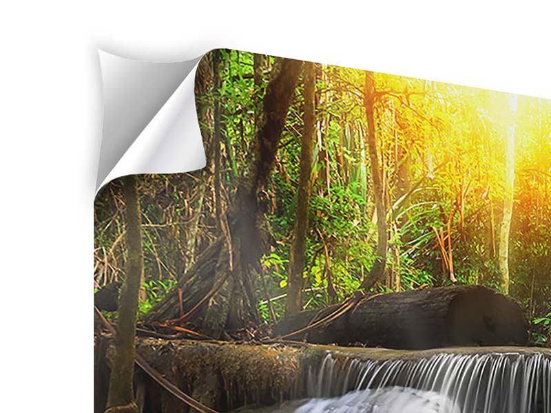 Klebeposter 5-teilig modern Nationalpark Si Nakharin