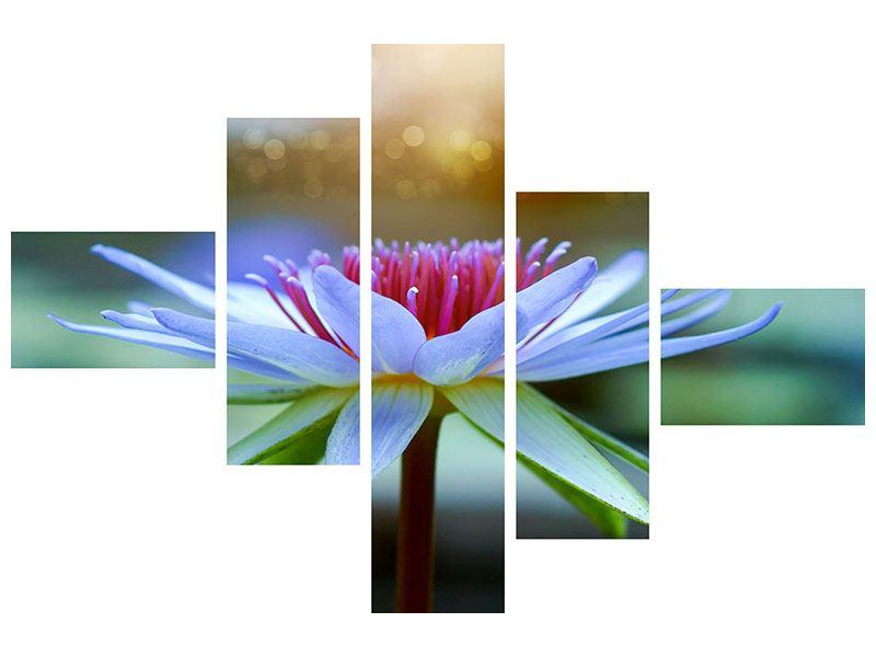 Klebeposter 5-teilig modern Pretty Lotus