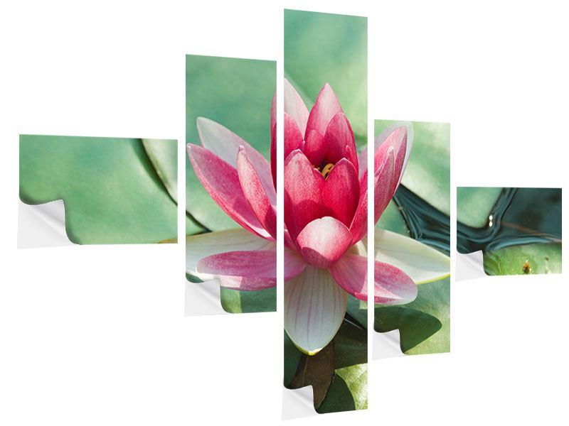 Klebeposter 5-teilig modern Der Frosch und das Lotusblatt