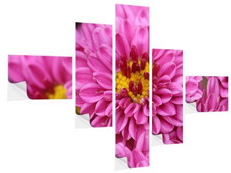 Klebeposter 5-teilig modern Chrysanthemen