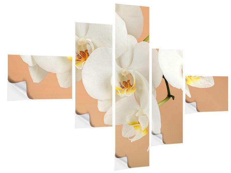 Klebeposter 5-teilig modern Weisse Orchideenblüten