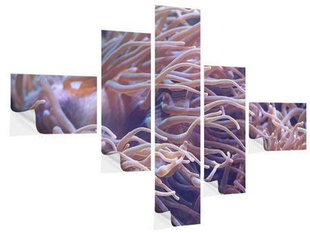Klebeposter 5-teilig modern Korallenriff