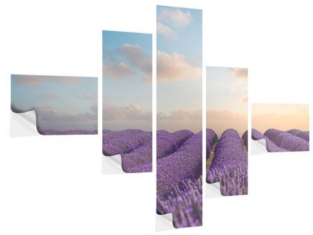 Klebeposter 5-teilig modern Das blühende Lavendelfeld