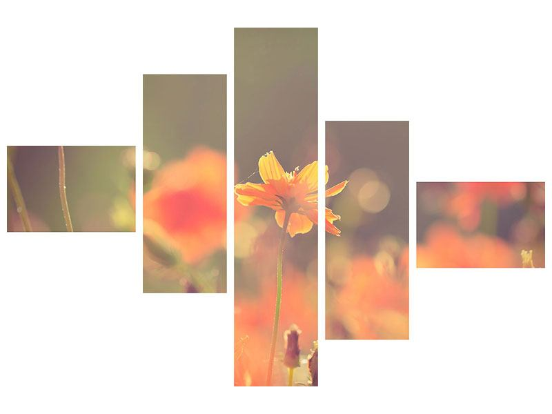 Klebeposter 5-teilig modern Blütenpracht