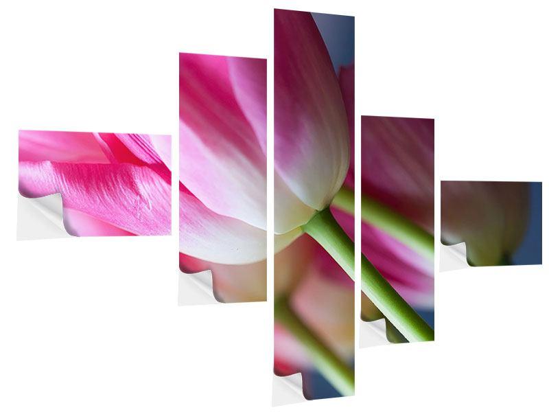 Klebeposter 5-teilig modern Makro Tulpen