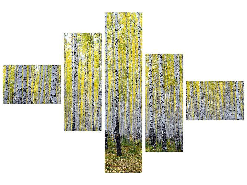 Klebeposter 5-teilig modern Herbstlicher Birkenwald
