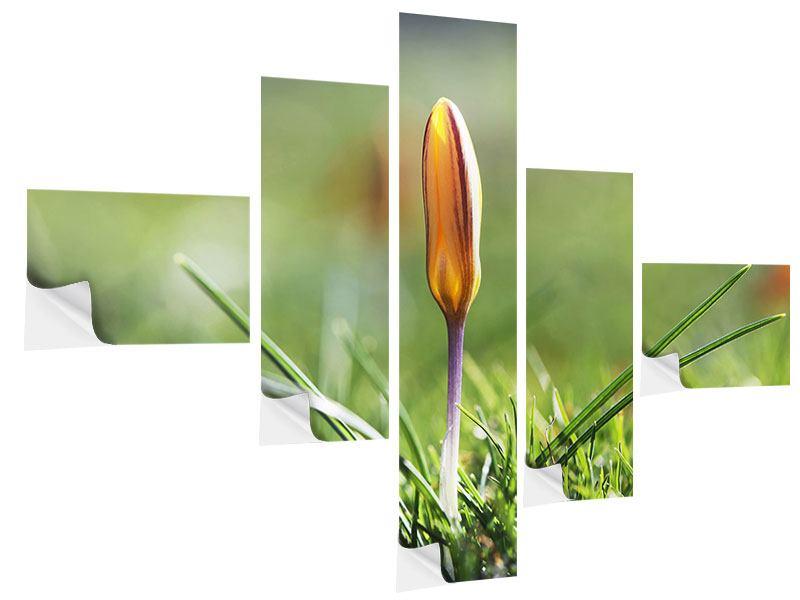 Klebeposter 5-teilig modern Die Blütenknospe