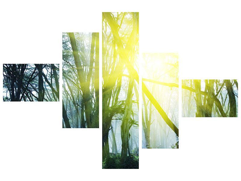 Klebeposter 5-teilig modern Sonnenstrahlen im Wald