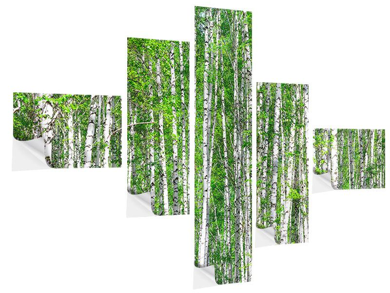 Klebeposter 5-teilig modern Der Birkenwald