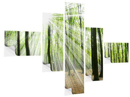 Klebeposter 5-teilig modern Magisches Licht in den Bäumen